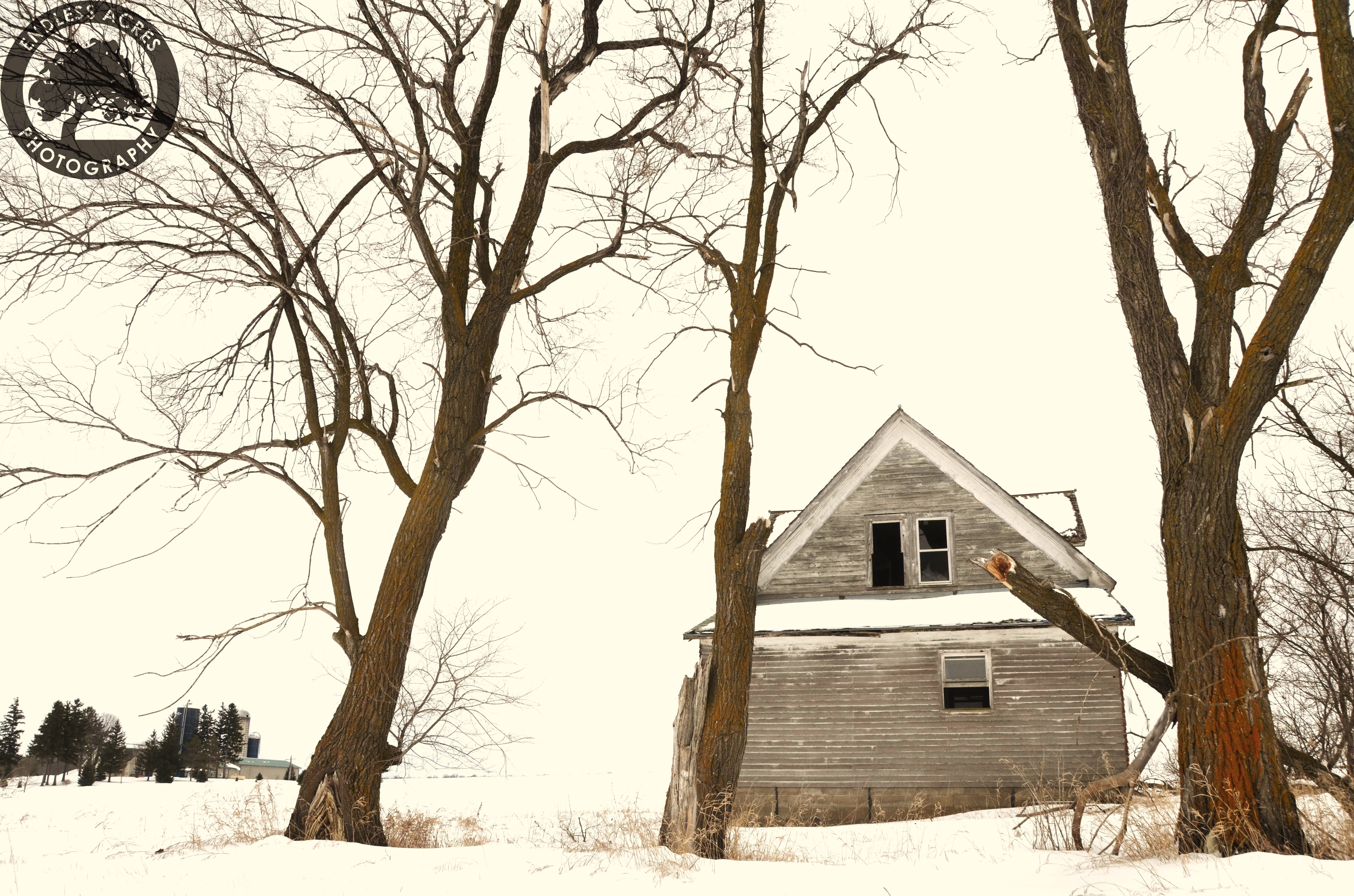 www.endlessphotoadventures.com
